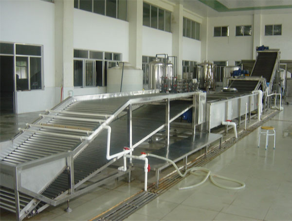 lychee juice and wine processing plant
