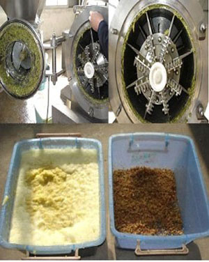 process of fruit pulping