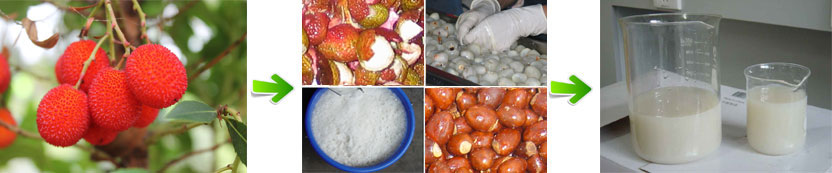 production process of lychee juice